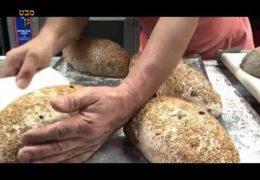 הלחם של חנוך