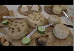 מפנטזים על גבינות עיזים