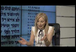 חלון לירושלים מס' 17 שמואל וולפמן