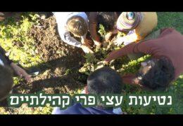 טו בשבט 2021- עצי פרי קהילתיים