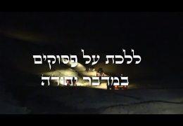 ללכת על פסוקים במדבר יהודה